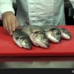 Comment écailler et lever les filets d'un poisson - Envie de Bien Manger